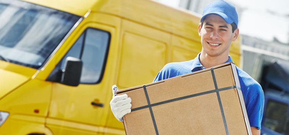 Logistica e Report